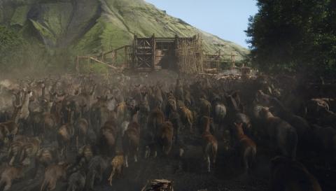 кадр №184954 из фильма Ной