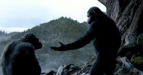 кадр №185711 из фильма Планета обезьян: Революция