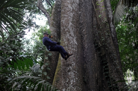 кадр №189705 из фильма Однажды в лесу