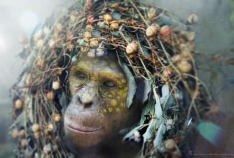 кадр №192357 из фильма Планета обезьян: Революция