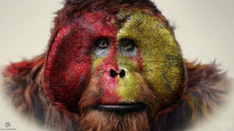 кадр №192358 из фильма Планета обезьян: Революция