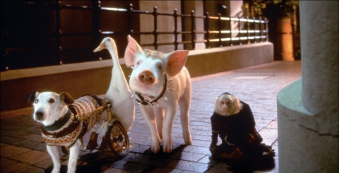 кадр №193912 из фильма Бэйб: Поросенок в городе