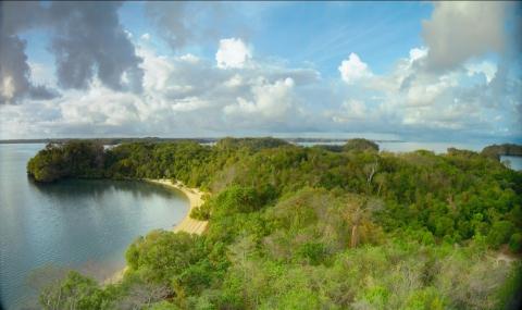 кадр №195630 из фильма Остров лемуров: Мадагаскар