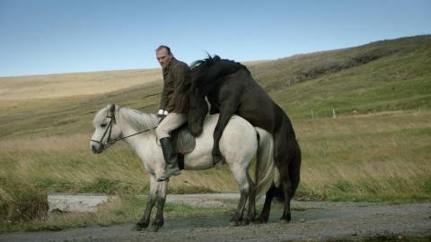 кадр №197082 из фильма О лошадях и людях