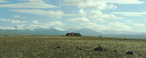 кадр №197090 из фильма О лошадях и людях