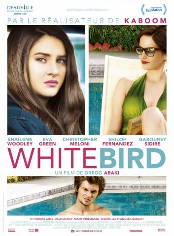 плакат фильма постер Белая птица в метели
