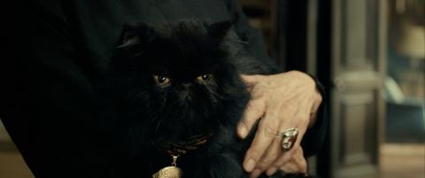 кадр №199160 из фильма Темнее ночи 3D