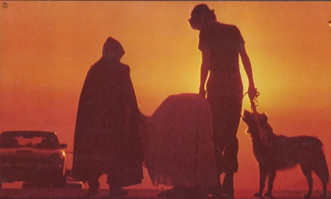 кадр №20458 из фильма Инопланетянин