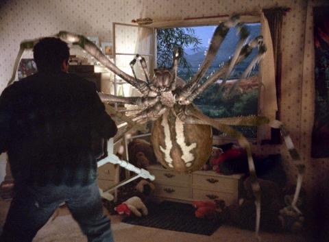 кадр №20464 из фильма Атака пауков