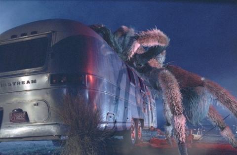 кадр №20466 из фильма Атака пауков