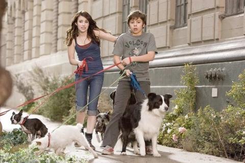 кадр №21755 из фильма Отель для собак