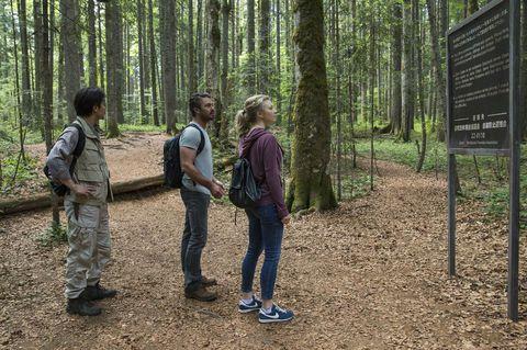кадр №220229 из фильма Лес призраков