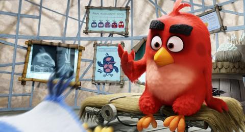 кадр №223776 из фильма Angry Birds в кино
