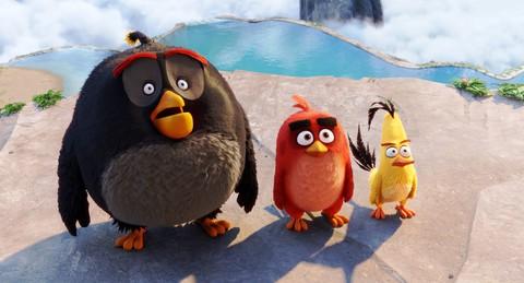 кадр №223778 из фильма Angry Birds в кино