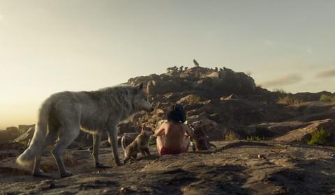 кадр №225377 из фильма Книга джунглей