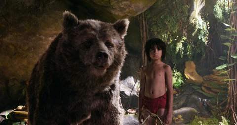кадр №225380 из фильма Книга джунглей