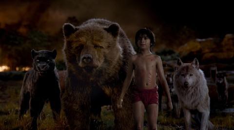 кадр №225384 из фильма Книга джунглей