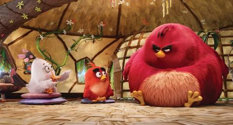 кадр №226746 из фильма Angry Birds в кино