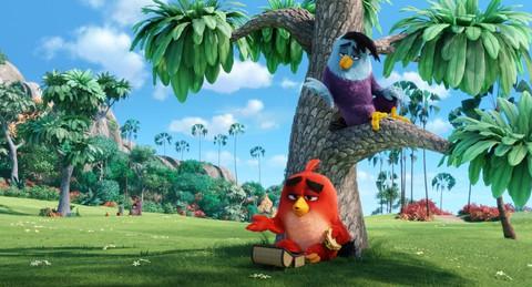кадр №226749 из фильма Angry Birds в кино