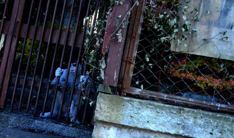 кадр №229005 из фильма Проклятые. Противостояние