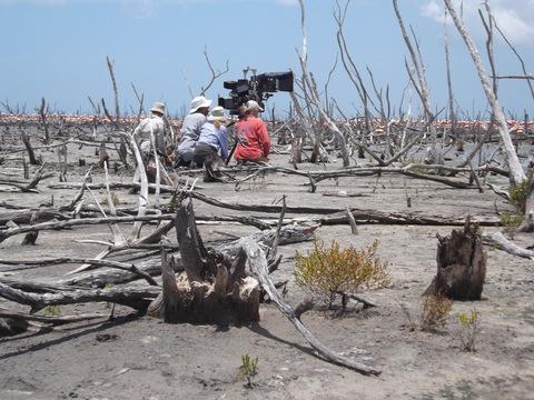 кадр №230693 из фильма Ураган: Одиссея ветра
