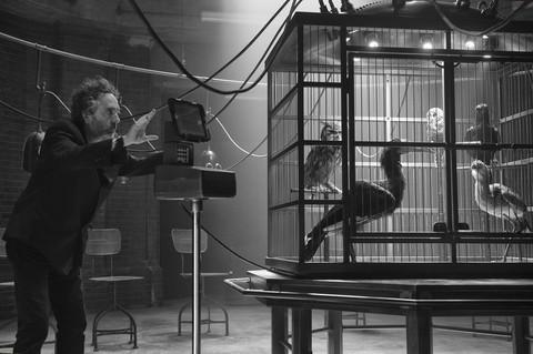 кадр №232140 из фильма Дом странных детей мисс Перегрин