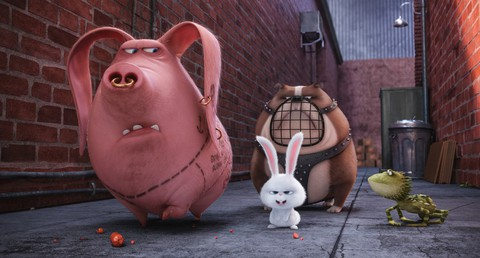 кадр №232927 из фильма Тайная жизнь домашних животных