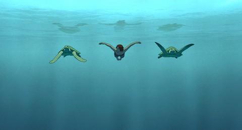 кадр №236311 из фильма Красная черепаха