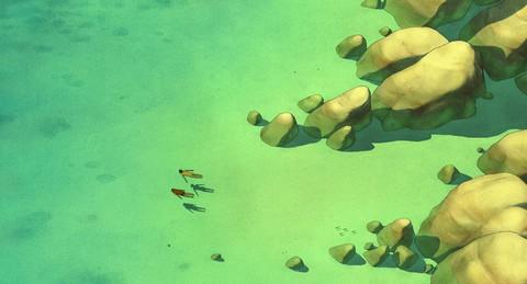 кадр №236323 из фильма Красная черепаха