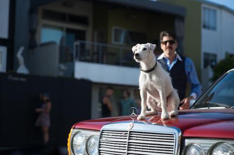 кадр №238417 из фильма Его собачье дело