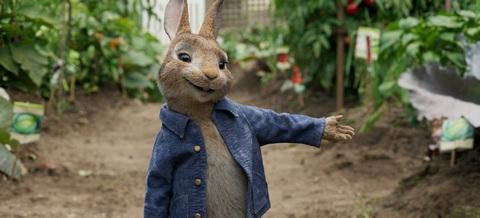 кадр №243453 из фильма Кролик Питер