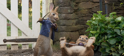 кадр №243455 из фильма Кролик Питер