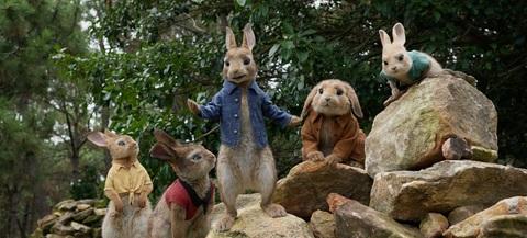 кадр №243467 из фильма Кролик Питер