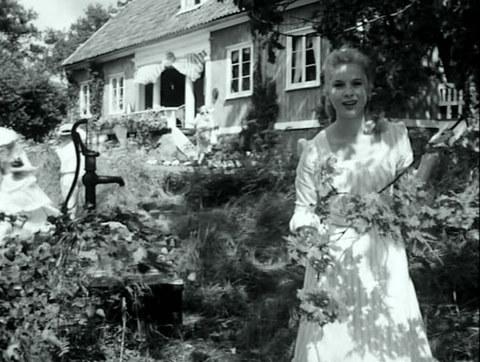 кадр №246688 из фильма Земляничная поляна