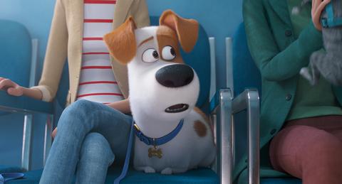 кадр №255351 из фильма Тайная жизнь домашних животных 2