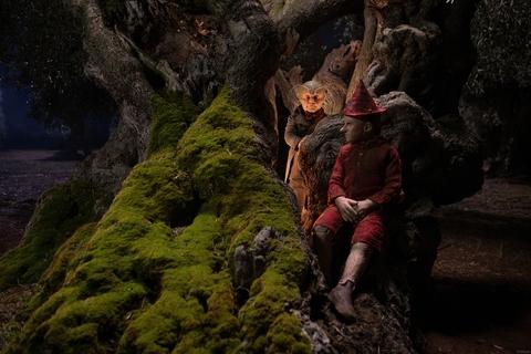 кадр №259768 из фильма Пиноккио