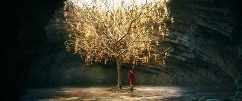 кадр №259770 из фильма Пиноккио