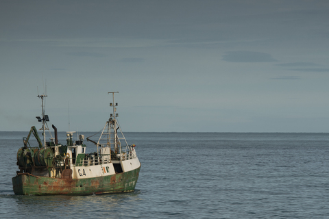 кадр №259835 из фильма Морские паразиты