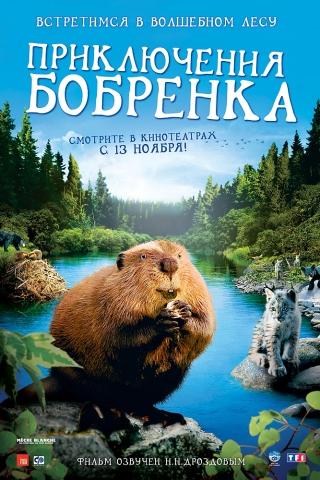 плакат фильма Приключения бобренка
