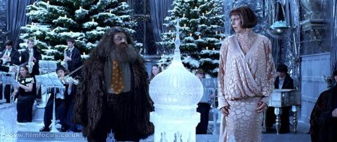 кадры из фильма Гарри Поттер и Кубок Огня Робби Колтрейн, Фрэнсис де ля Тур,