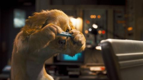 кадры из фильма Кошки против собак: Месть Китти Галор Бетт Мидлер,