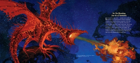 кадр №39059 из фильма Как приручить дракона