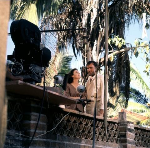кадр №41024 из фильма Ночь игуаны