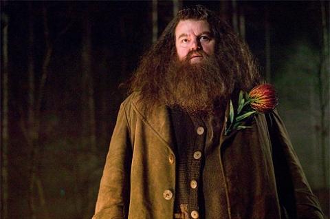 кадры из фильма Гарри Поттер и Кубок Огня Робби Колтрейн,