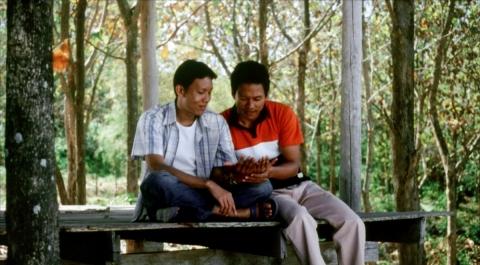 кадр №43056 из фильма Тропическая лихорадка