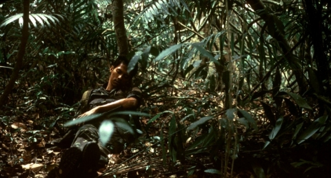 кадр №43057 из фильма Тропическая лихорадка