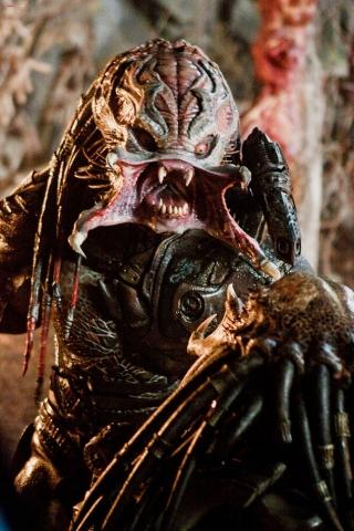 кадры из фильма Хищники