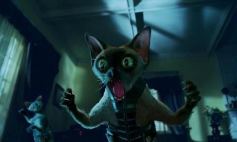 кадр №46832 из фильма Кошки против собак