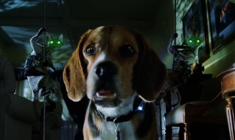 кадр №46836 из фильма Кошки против собак