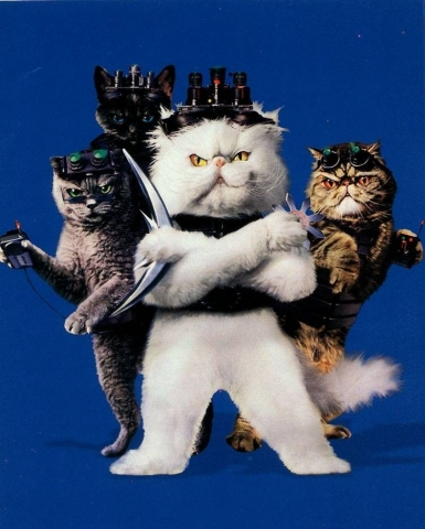 кадр №46843 из фильма Кошки против собак